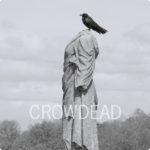 crowdead